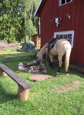 Ranch52_1
